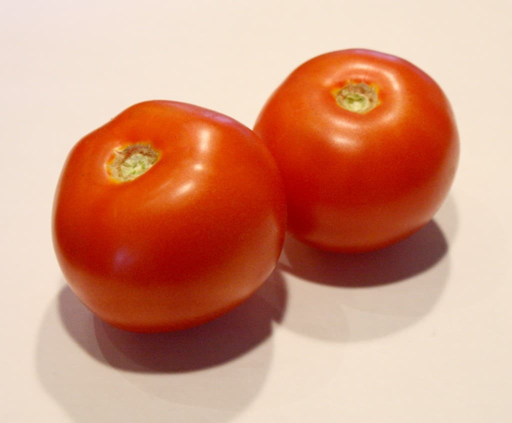 Tomatoes - littleredwindow.com