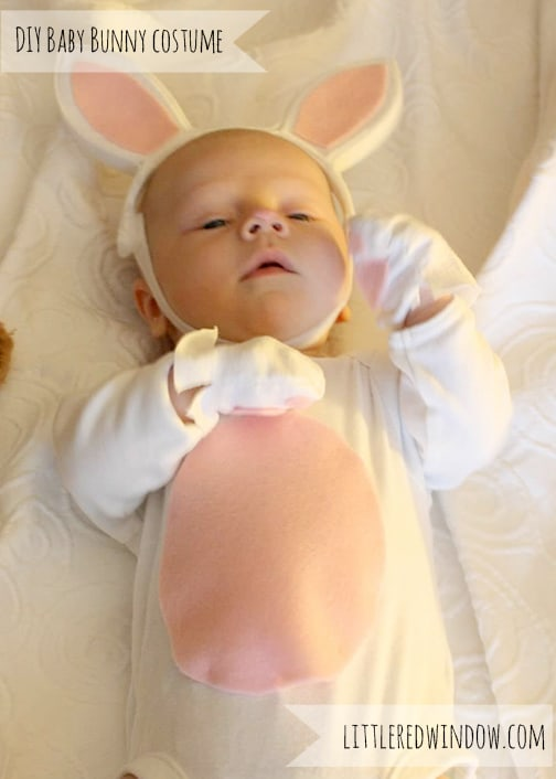 Adorable DIY Baby Bunny Costume from Little Red Window
