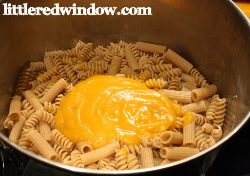 Butternut Squash Pasta Sauce on Little Red Window