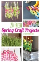 Spring Craft Projecs