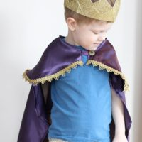 Mr. Rogers' Land of Make Believe King Friday Costume | littleredwindow.com