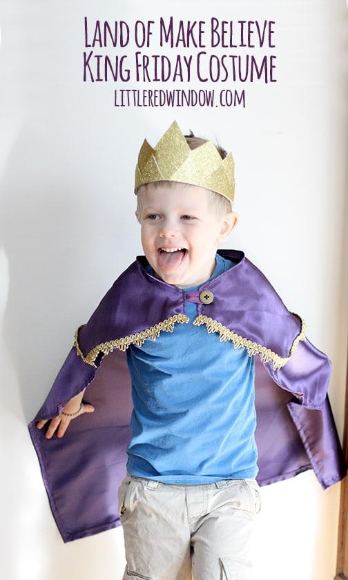 Mr. Rogers' Land of Make Believe King Friday Costume | littleredwindow.com