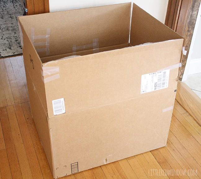 The 45 Minute Cardboard Box Car - Little Red Window