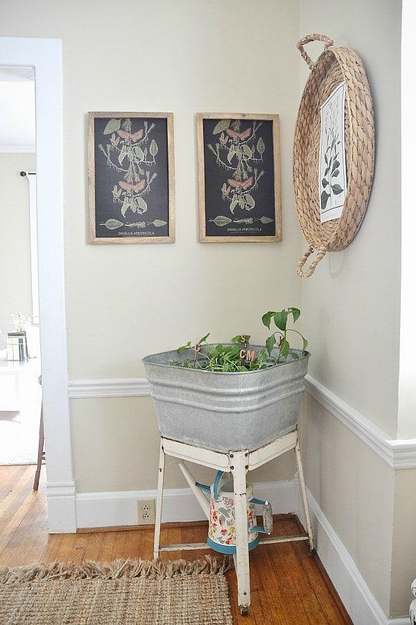 DIY Washtub Garden from Liz Marie Blog