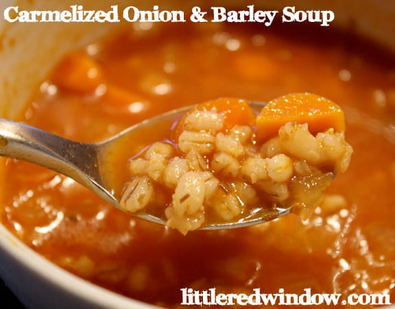 Spoon holding caramelized onion and barley soup with carrots