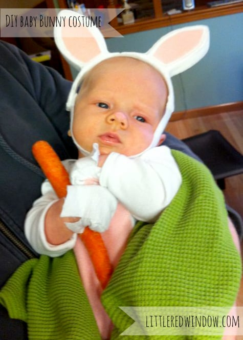 Tiny baby dressed as a bunny and holding a carrot