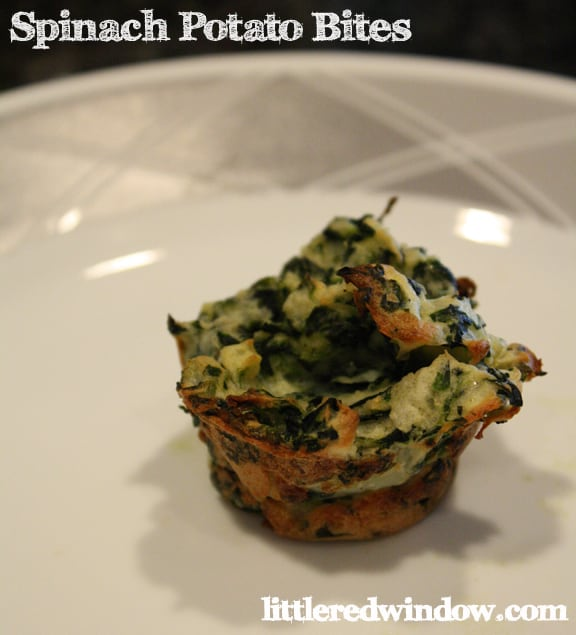 1 spinach potato bite on a white plate with gray geometric pattern around the edge