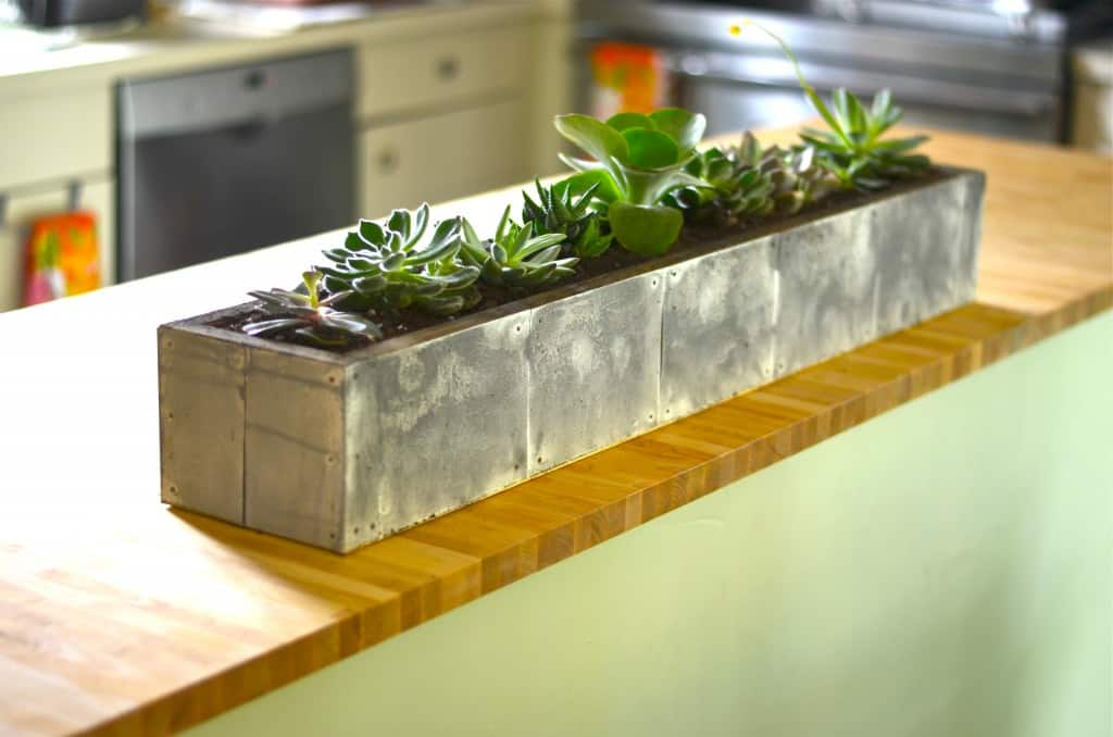 Long rectangular planter filled with succulents on a wood kitchen island