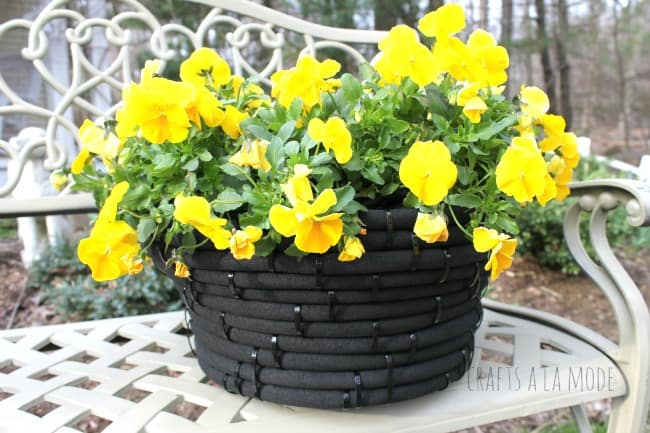 Plant planter made from a coiled black garden hose held together with zip ties, contains yellow flowers