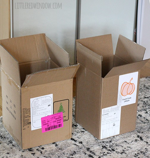 Two tall rectangular cardboard boxes