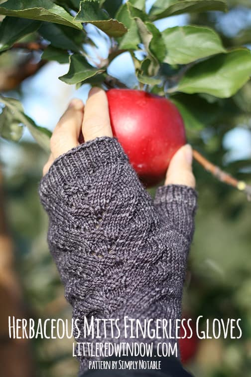 Herbaceous Mitts Fingerless Gloves | littleredwindow.com