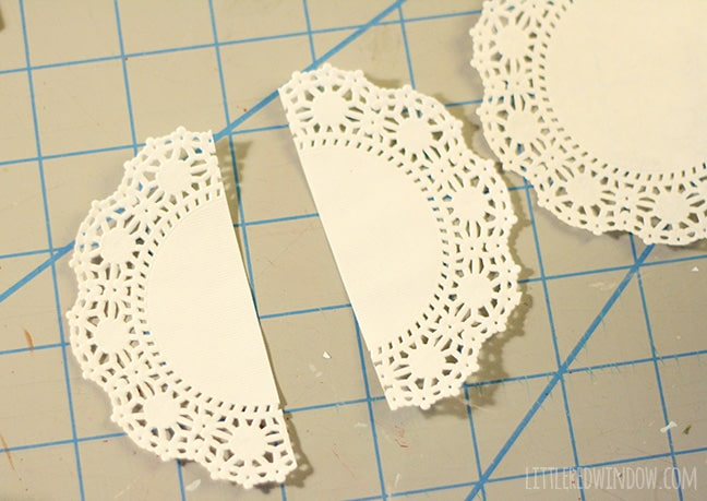 paper doily cut in half