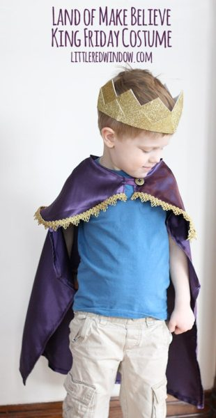 Mr. Rogers' Land of Make Believe King Friday Inspired Costume