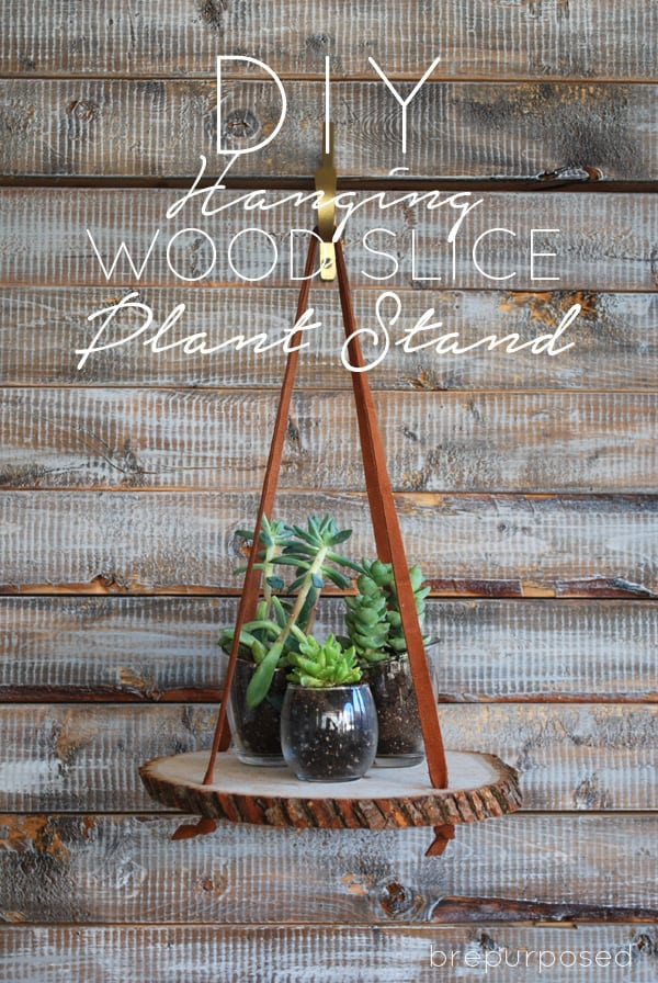 hanging wood slice shelf holding plants