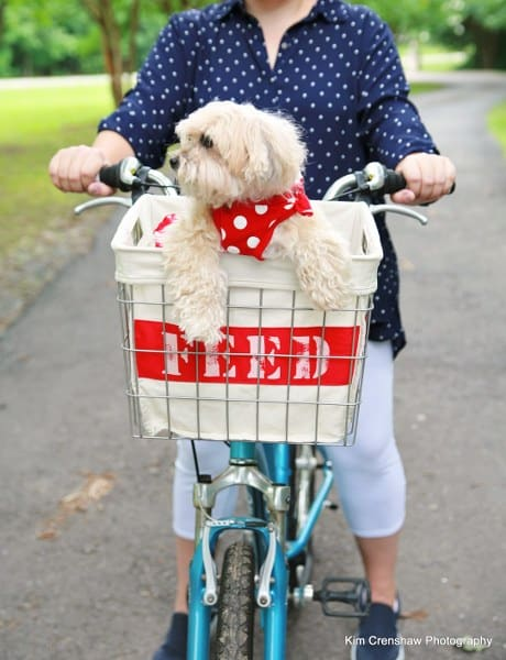woman riding bike with wire basket holding a dog