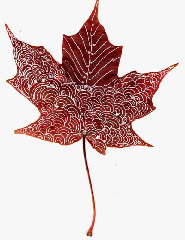november_leaf002.1