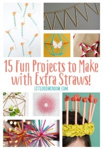 15 Fun Craft Pr-ojects to make with Extra Straws! | littleredwindow.com