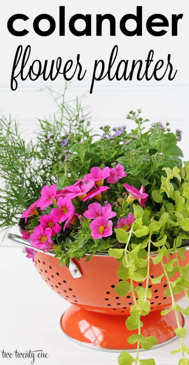 colander-flower-planter-1
