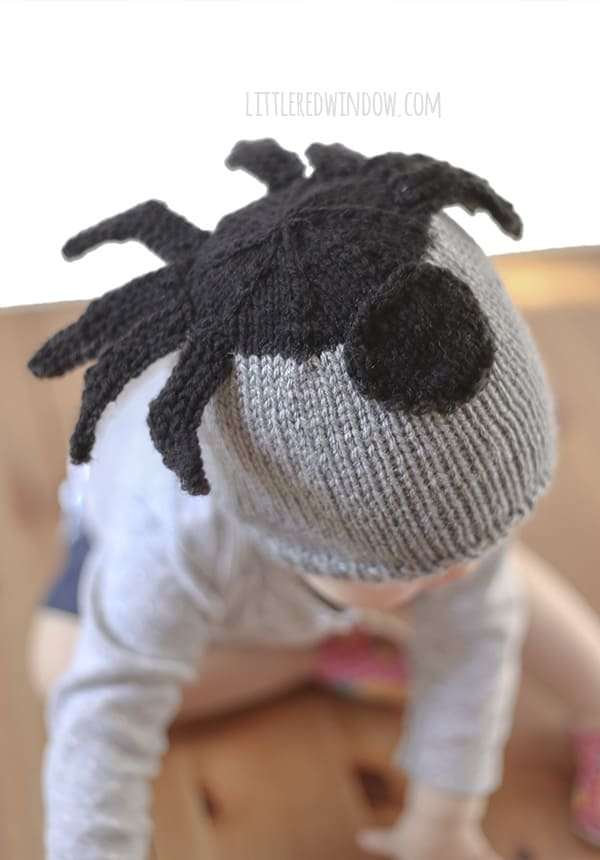 Silly Spider Hat Knitting Pattern Little Red Window