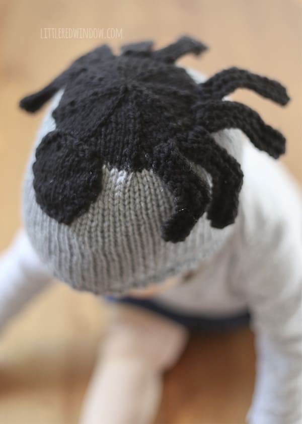 Silly Spider Hat Free Knitting Pattern for newborns, babies and toddlers!! | littleredwindow.com