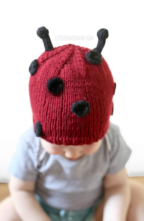 Little Ladybug Hat Knitting Pattern Babies