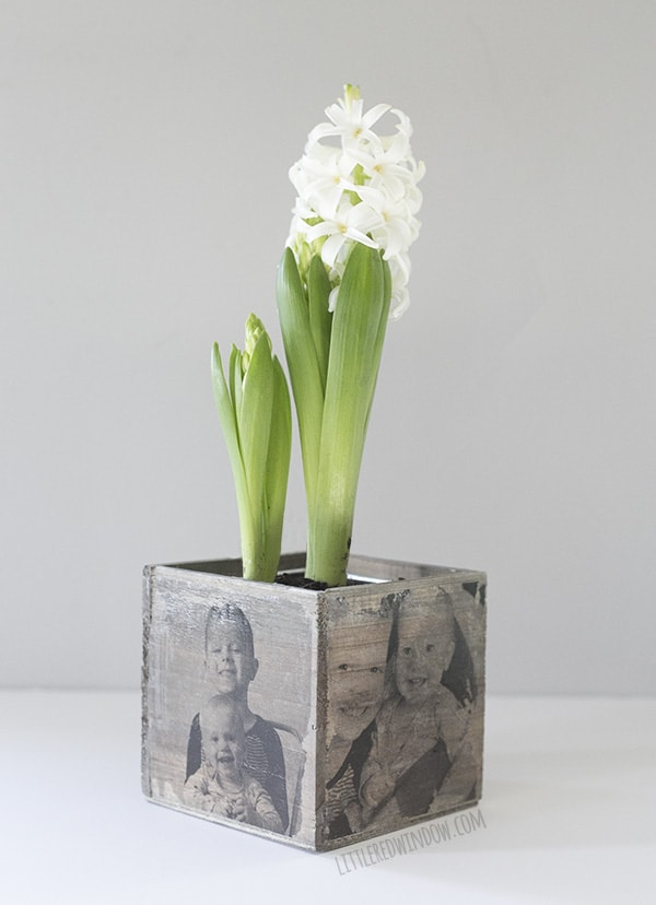 DIY Photo Planter, transfer cute family photos to this adorable wood planter, it's a perfect gift for Mother's Day! | littleredwindow.com