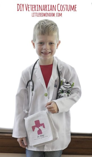 DIY Veterinarian Costume