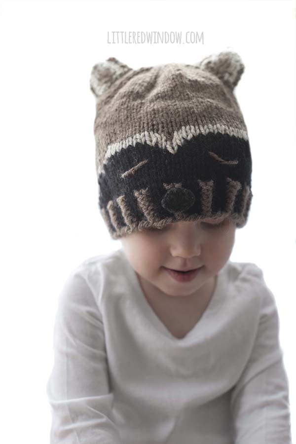 Sleepy Raccoon Baby Hat Knitting Pattern, a fun woodland pattern for your newborn, baby or toddler! | littleredwindow.com