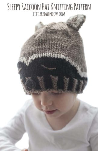 Sleepy Raccoon Hat Knitting Pattern