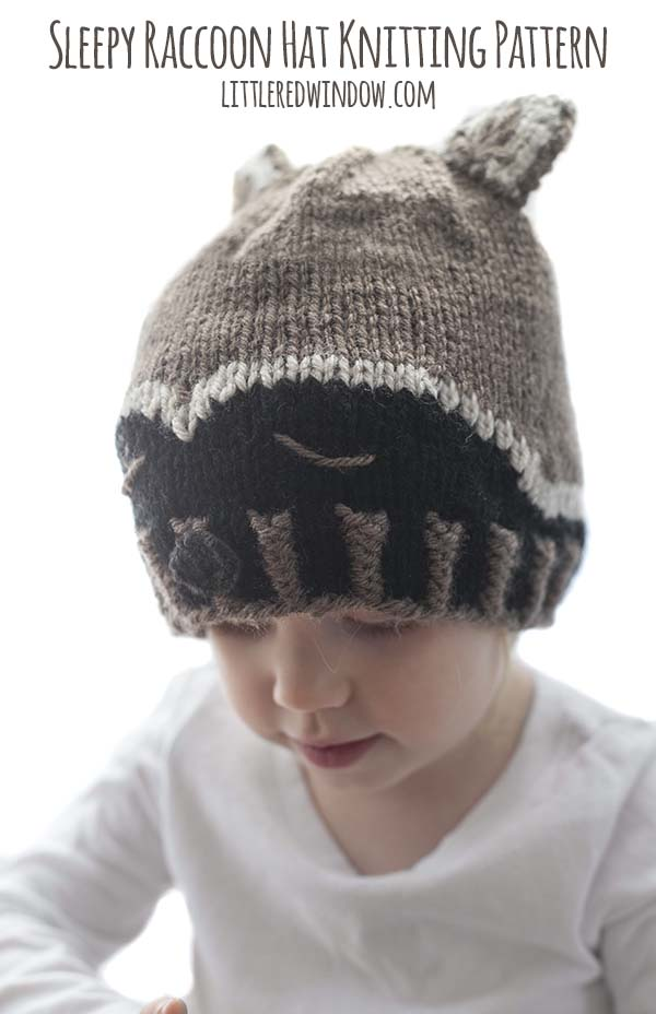 Sleepy Raccoon Hat Knitting Pattern