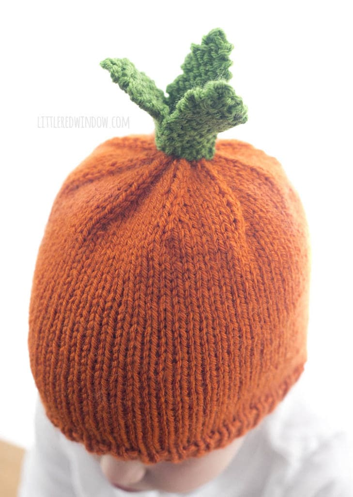 view from above of little girl in orange knit carrot hat with green knit carrot leaves on top