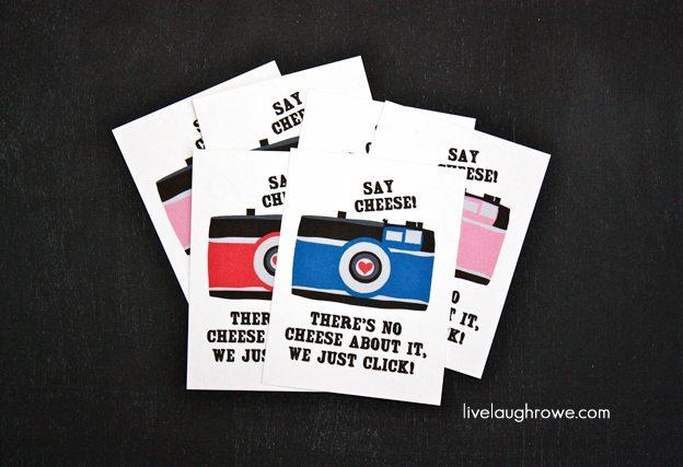 Colorful Camera Valentines