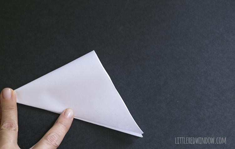 hand holding folded triangle of paper