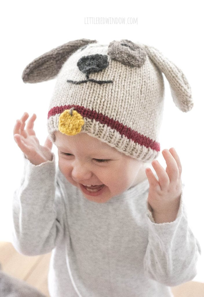 laughing baby wearing a tan and brown puppy dog hat with red collar and yellow tag