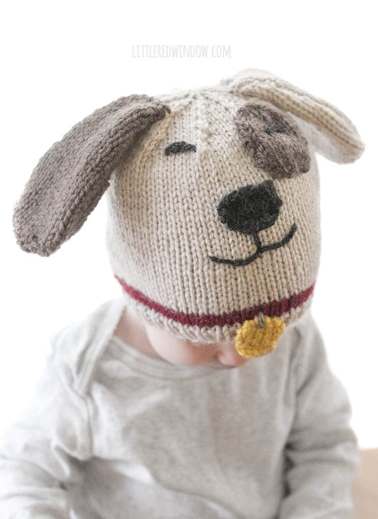 baby wearing a tan and brown puppy dog hat with red collar and yellow tag looking down and to the right